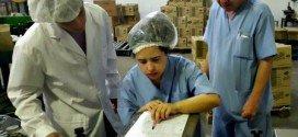 Inclusión laboral de personas con discapacidad intelectual